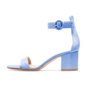 Women's Light Blue Suede Chunky Heel Ankle Strap Sandals