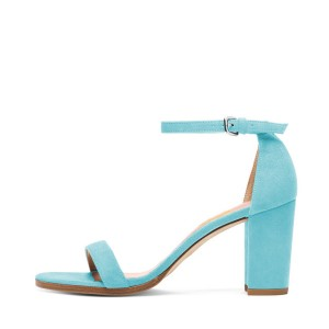 Light Blue Ankle Strap Sandals Suede Block Heels for Ladies